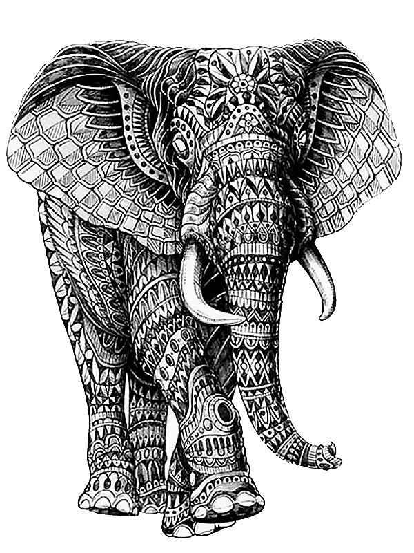African Mandala Elephant - Tatouage Ephémère - Tattoo Forest