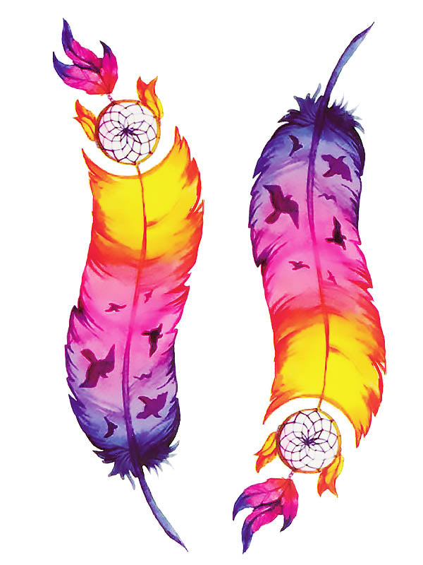Colorful Bird Dreamcatcher Feathers