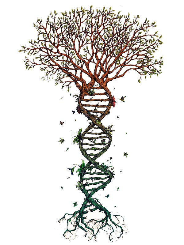 DNA Tree - Tatouage Ephémère - Tattoo Forest