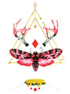 Geometric Red Diamond and Sphinx Butterfly with Antlers - Tatouage Ephémère - Tattoo Forest