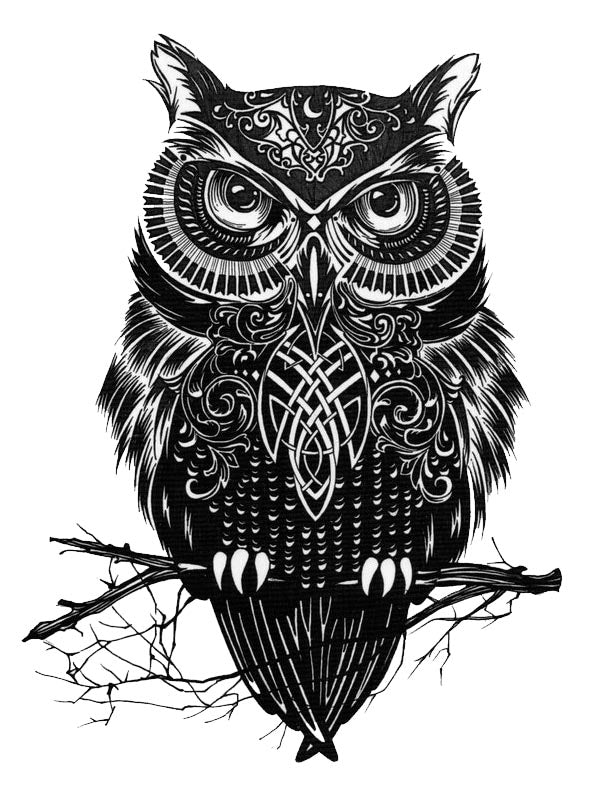 Black and White Owl - Tatouage Ephémère - Tattoo Forest