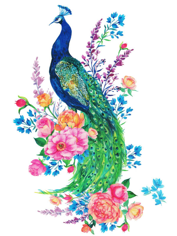 Peacock and Flowers - Tatouage Ephémère - Tattoo Forest