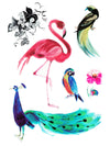 Pink Flamingo, Parrot, Peacock and Flowers