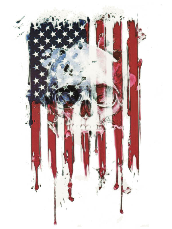 Skull and the US Flag