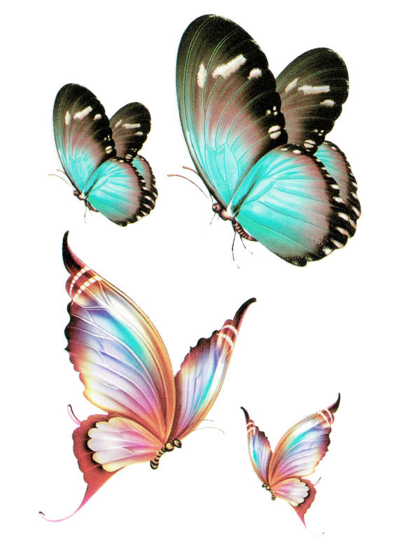 Turquoise and Iridescent Butterflies