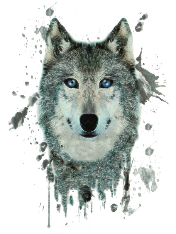 Watercolor Grey Wolf 1