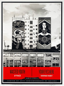 SHEPARD FAIREY x D*FACE 'Wasted Youth/Your Eyes Here' Screen Print (3)