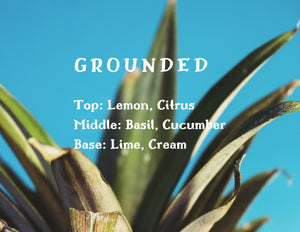 Grounded Candle - Lime + Basil