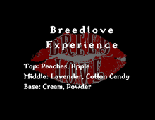 Load image into Gallery viewer, The Breedlove Experience