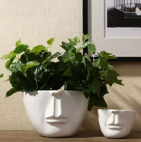Soilless face shaped planter