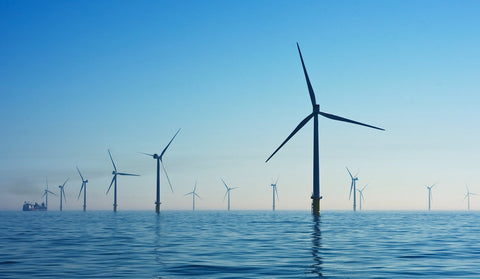 Copenhagen Startups: Giving Back Is In Their DNA, image of windmill farm.