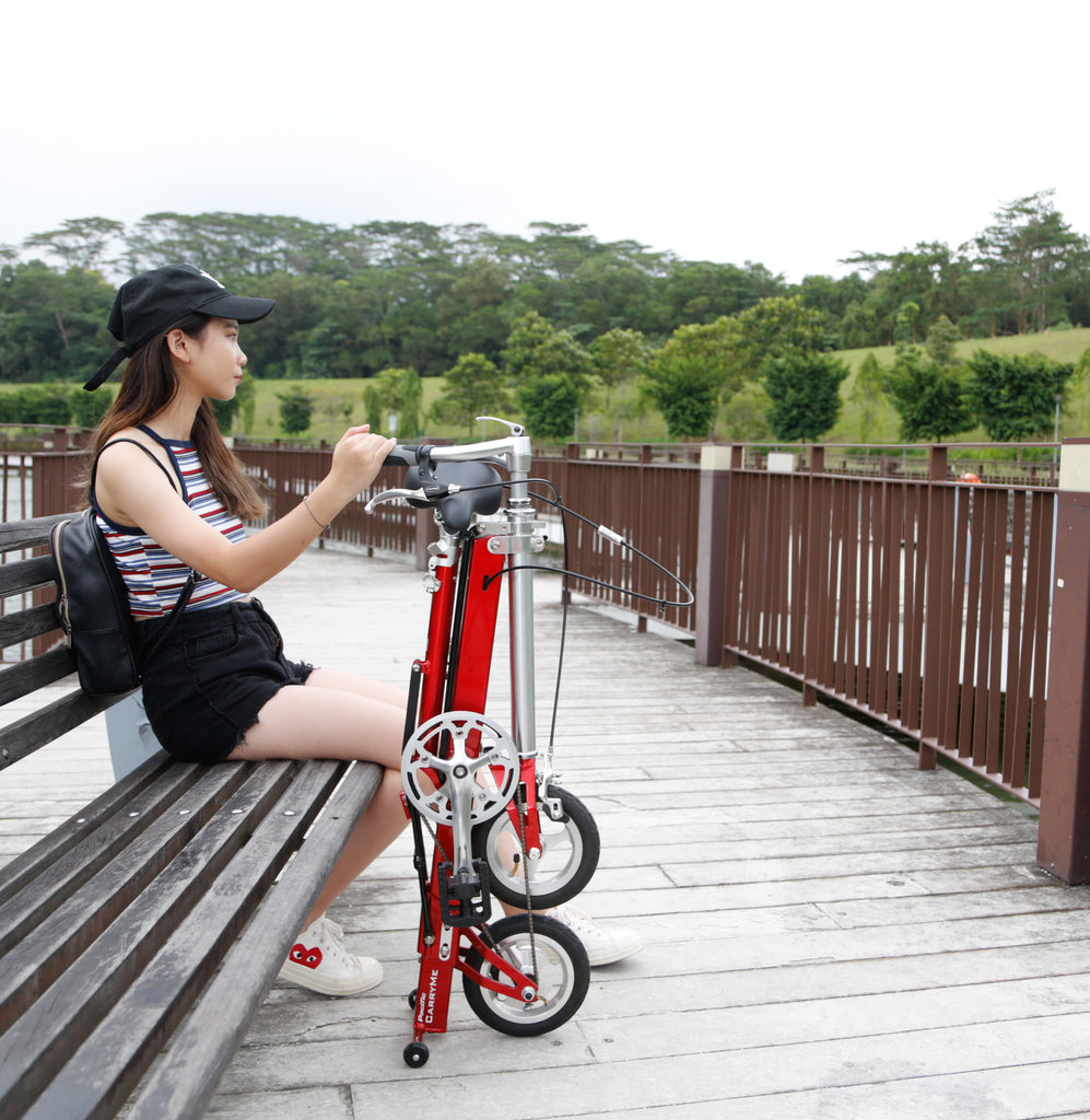 5 best places to visit with the CarryMe compact folding bicycle ...