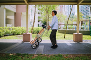 CarryAll Tricycle (Slate Grey)