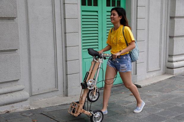 CarryAll Tricycle (Khaki Brown)