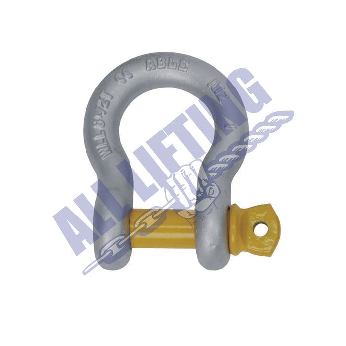 Rated Grade S Screw Pin Bow Shackle