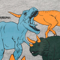 Toddler long sleeve T-shirt - Gray Dinosaur