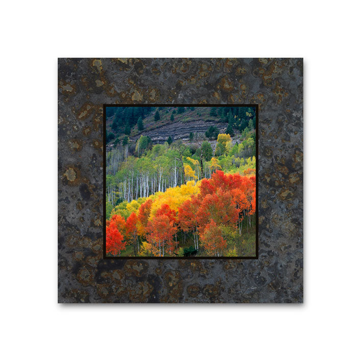 Changing Color, McClure Pass, Redstone CO 4x4 Slate Coaster