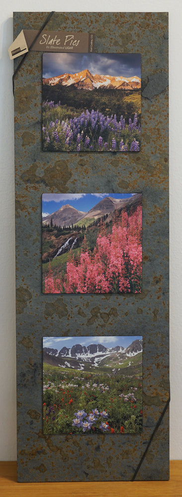Mountain Flower Trio 8x24 Slate