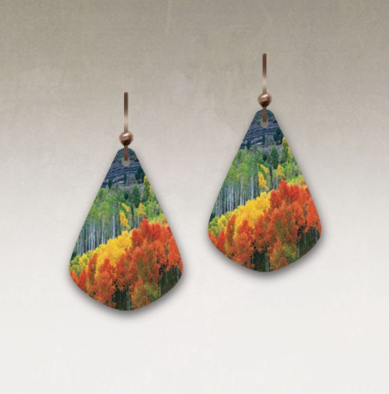 DC Designs - J04JE Earrings