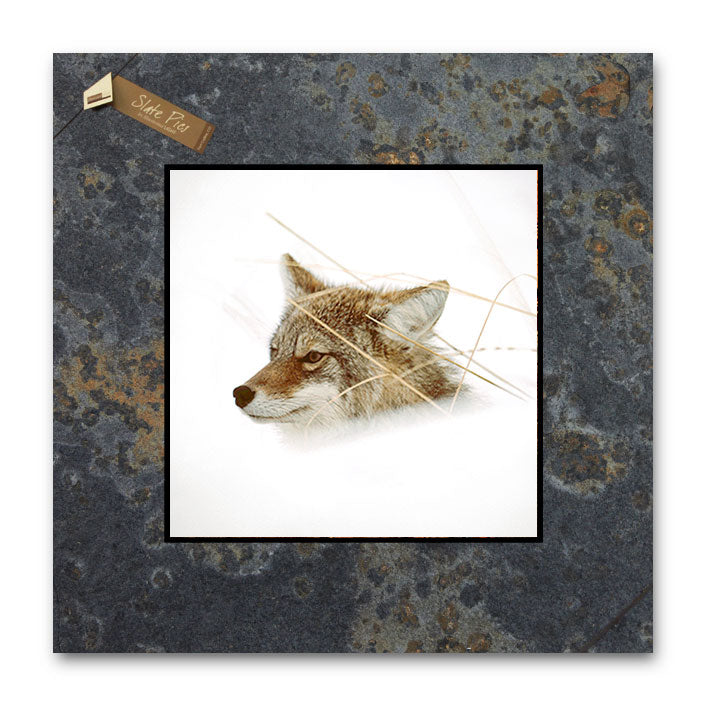 Fox in Winter 4x4 Slate Coaster