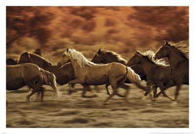 Autumn Run Horses 4x4 Slate Coaster