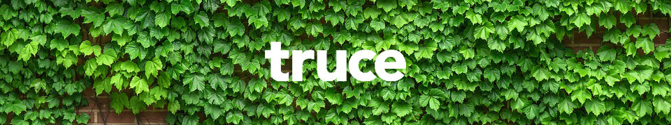 The Simple Clean Tips from Truce Clean