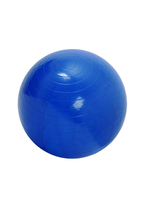 55CM Yoga Fitness Extra Thick Workout Burst Resistant Stability Exercise Ball