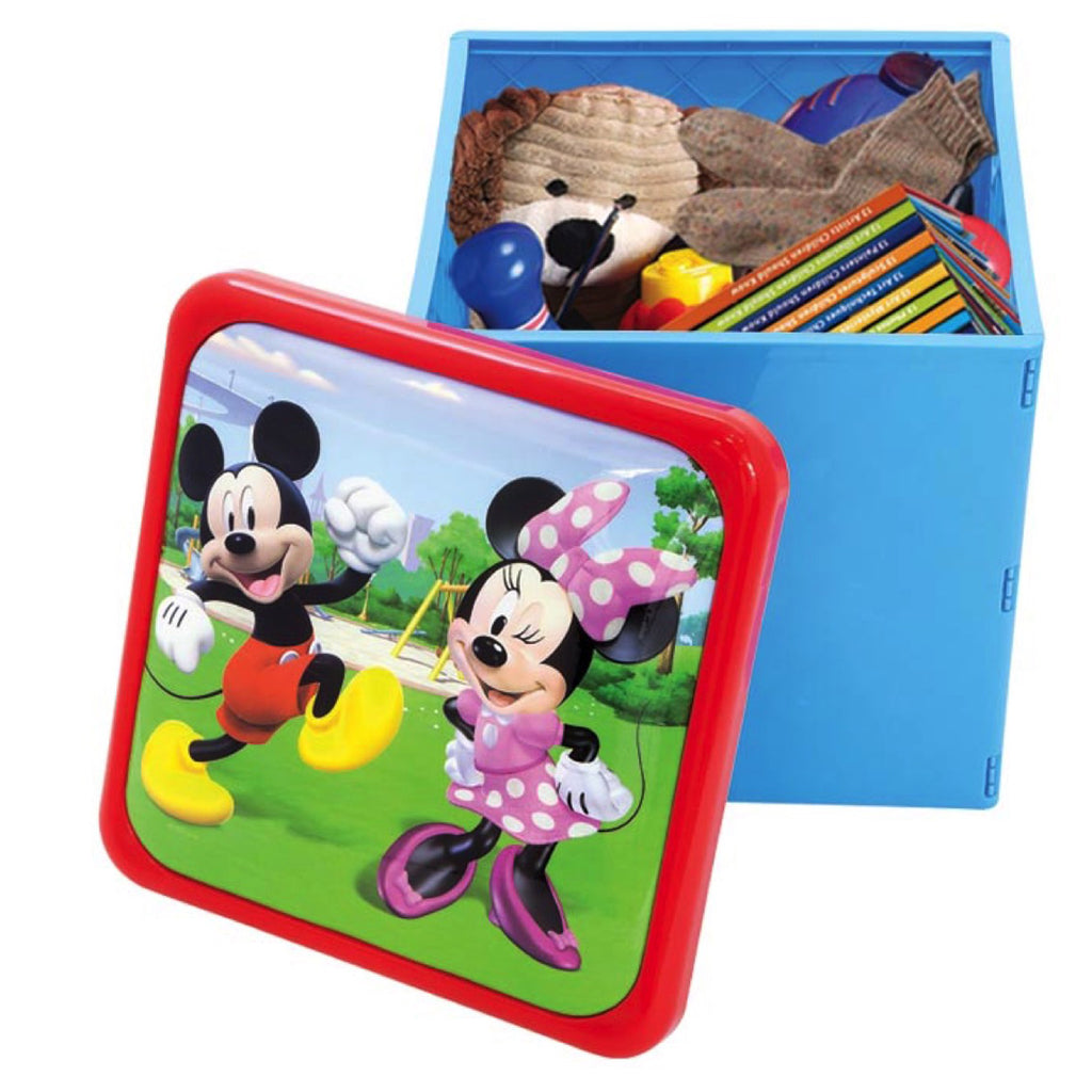 Disney Mickey Mouse Roadster Racers Sit N' Store Cube F17