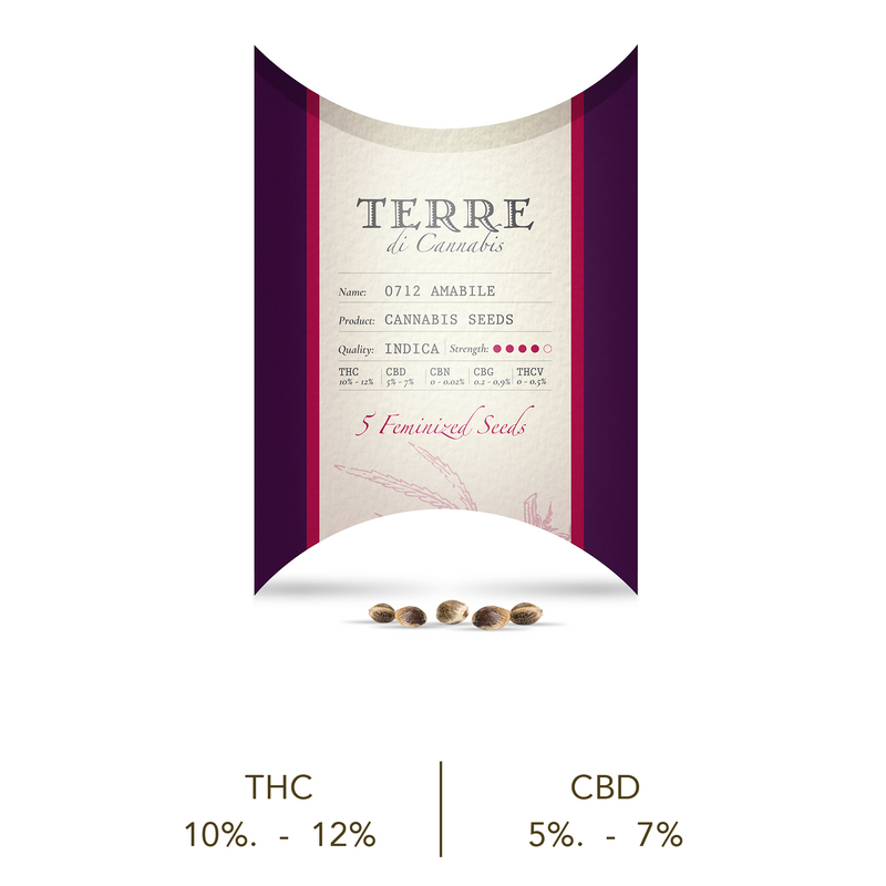 products/TERRE_amabile_new.png