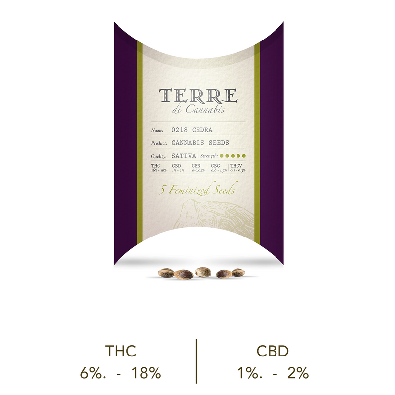 products/TERRE_cedra_new.png