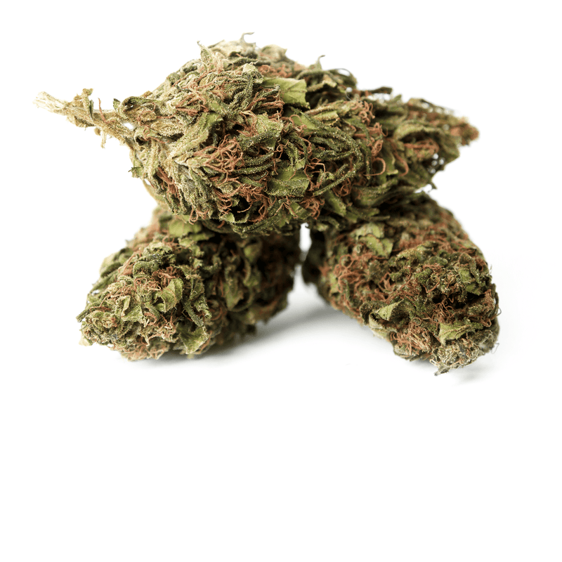 products/TERRE_di_CANNABIS_box_flower_SANTA_3.png