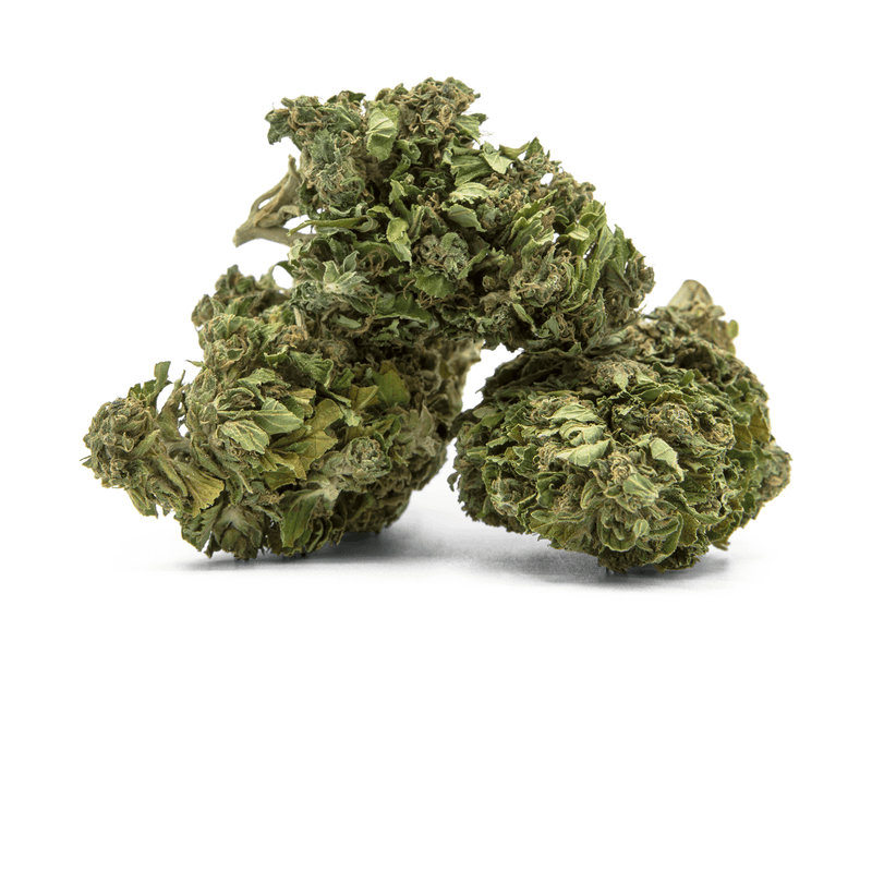 products/TERRE_di_CANNABIS_box_flower_SIRENTE3.png