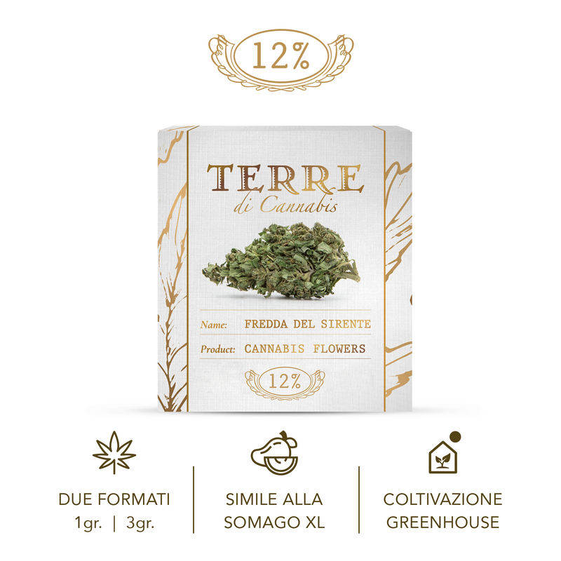 products/TERRE_fredda_2g_1_2.png
