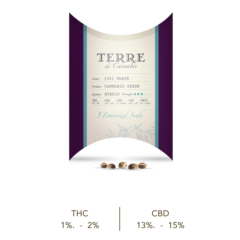 products/TERRE_soave_new.png