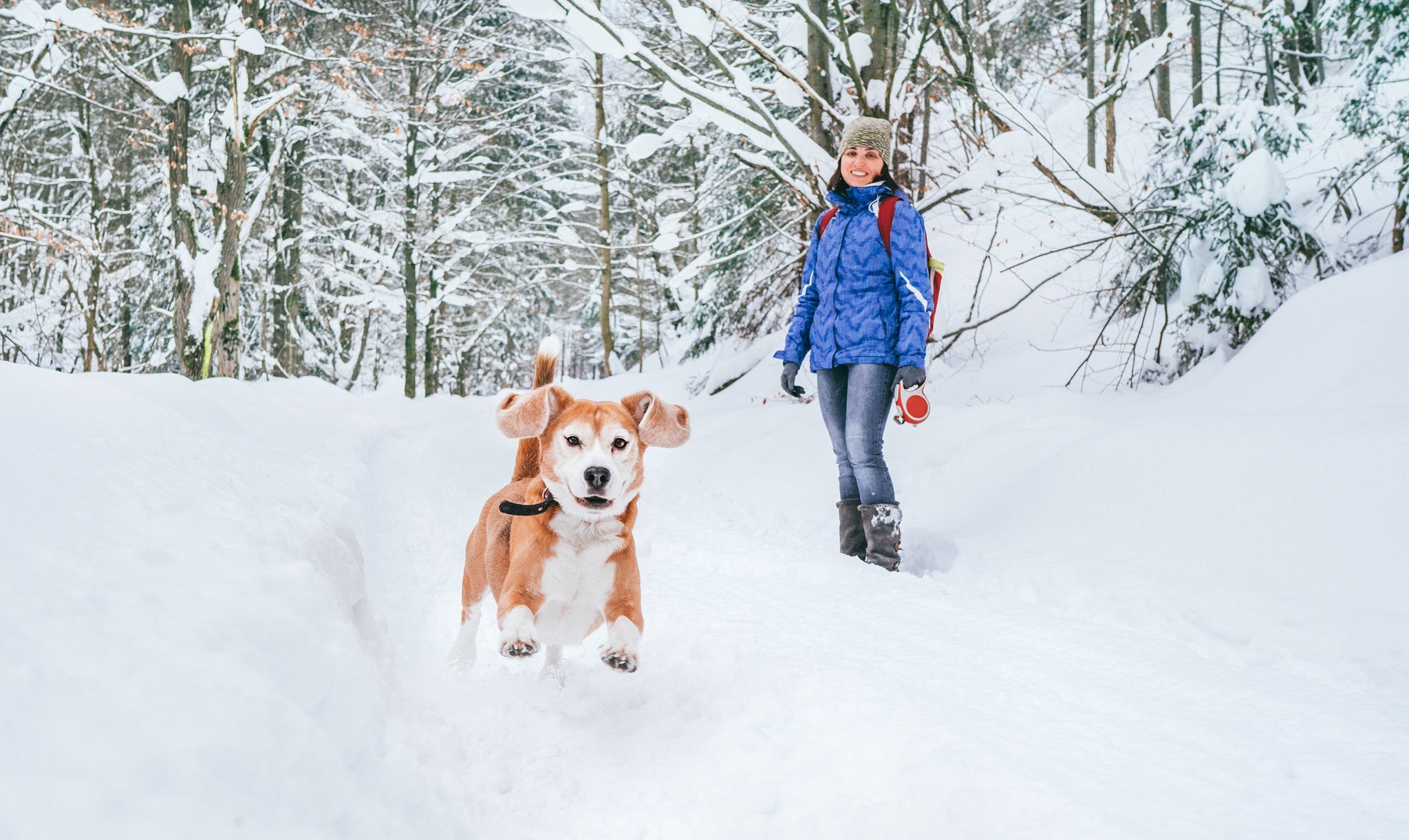 The Safest Winter Boots For Dog Walking On Ice & Snow