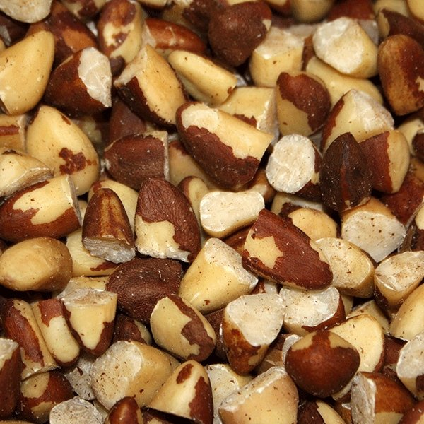 Wholefood Earth: Organic Broken Brazil Nuts | Raw | GMO Free - Wholefood Earth®