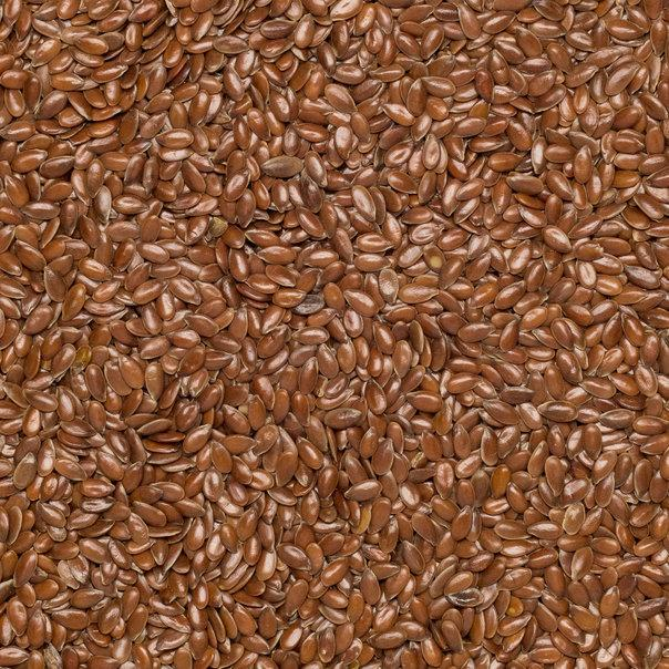 Wholefood Earth: Organic Brown Linseed | Raw | GMO Free - Wholefood Earth®