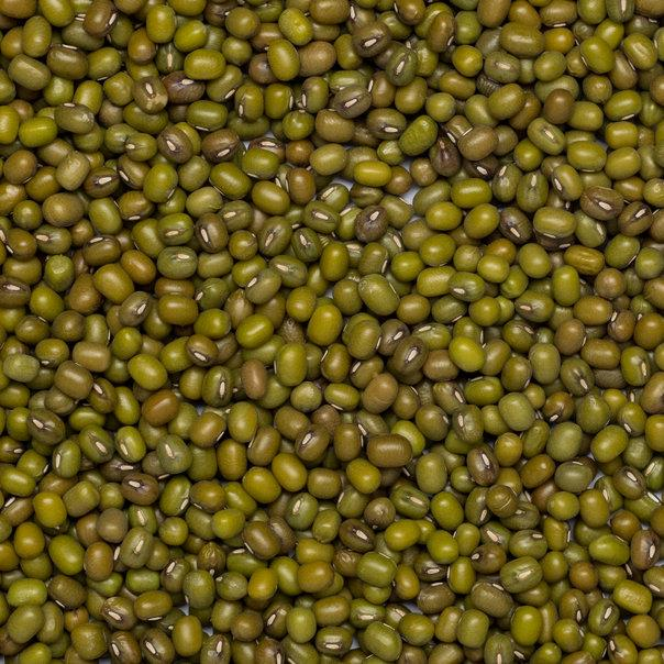 Wholefood Earth: Organic Mung Beans | GMO Free - Wholefood Earth®