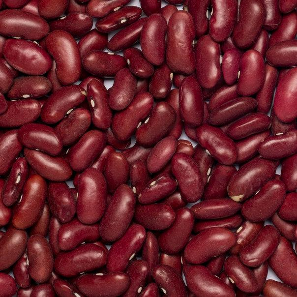 Wholefood Earth: Organic Red Kidney Beans | Raw | Vegan | GMO Free | Dark Red - Wholefood Earth®