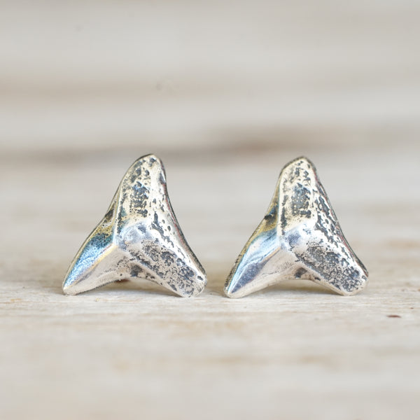 Shark tooth stud earrings