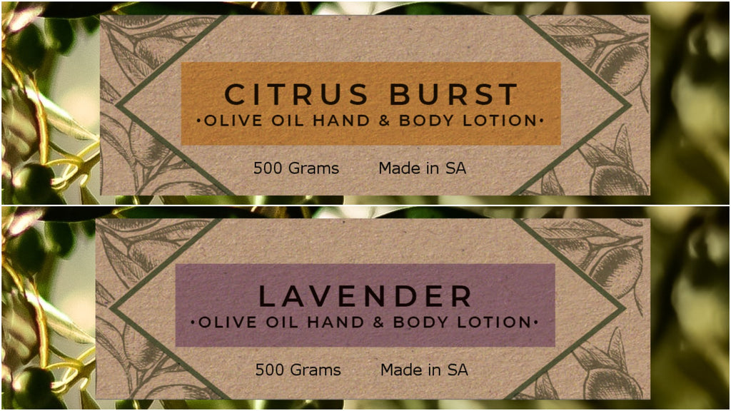 Olive Oil Hand & Body Lotion