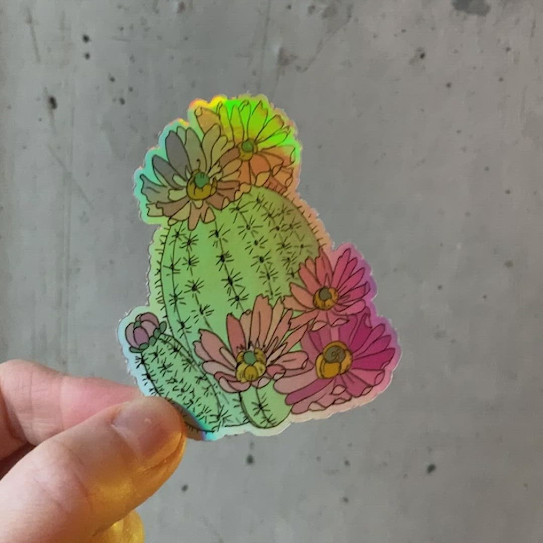 Cactus Holographic sticker