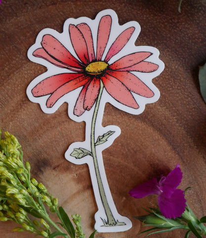 Coral Daisy Cute Flower Sticker-Vinyl Sticker-Roam Wild Designs