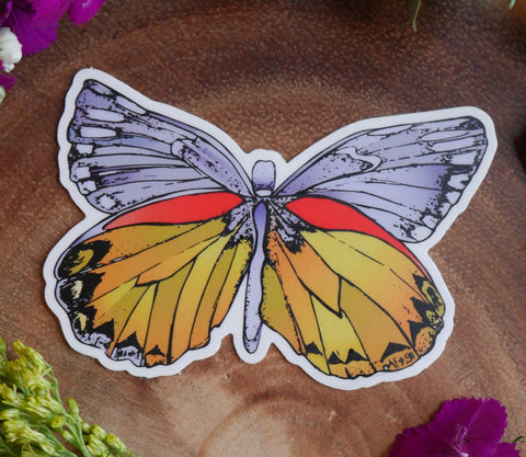 Beautiful spring butterfly sticker. Colorful cute sticker