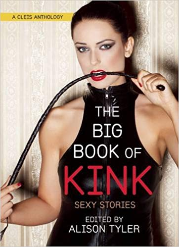 The Big Book of Kink:
