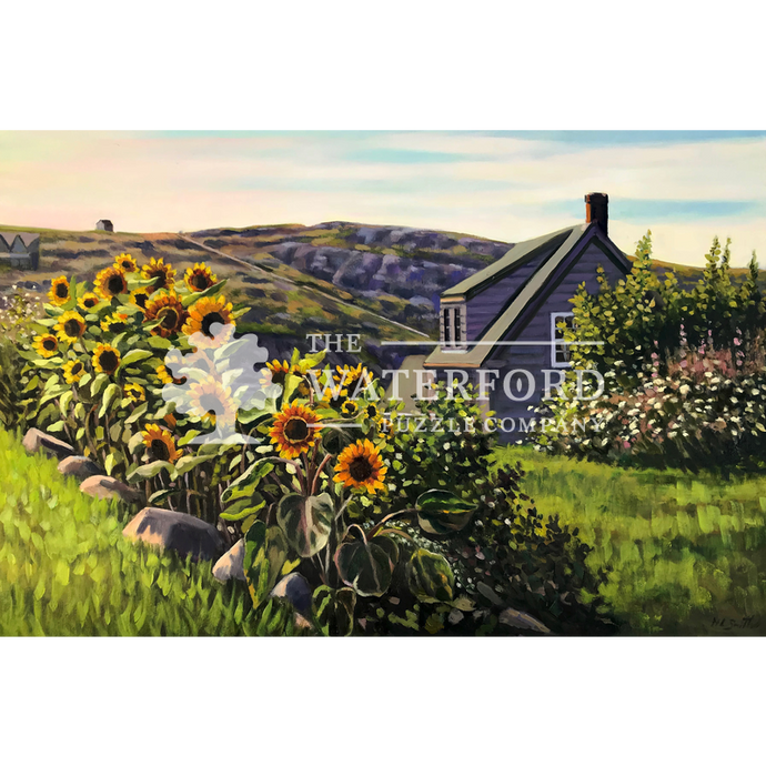 Sunflowers on Monhegan