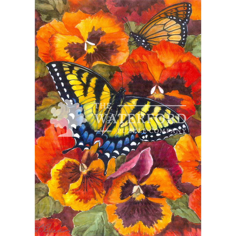 Swallowtail and Pansies