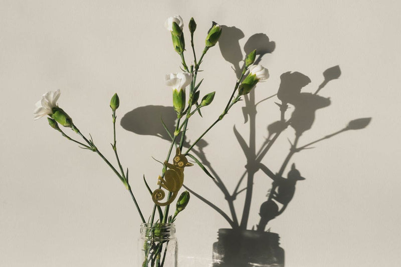 quirky valentines gifts for plant lovers