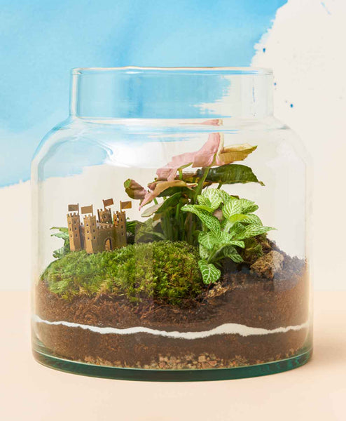 Our final terrarium with Mini Model Castle