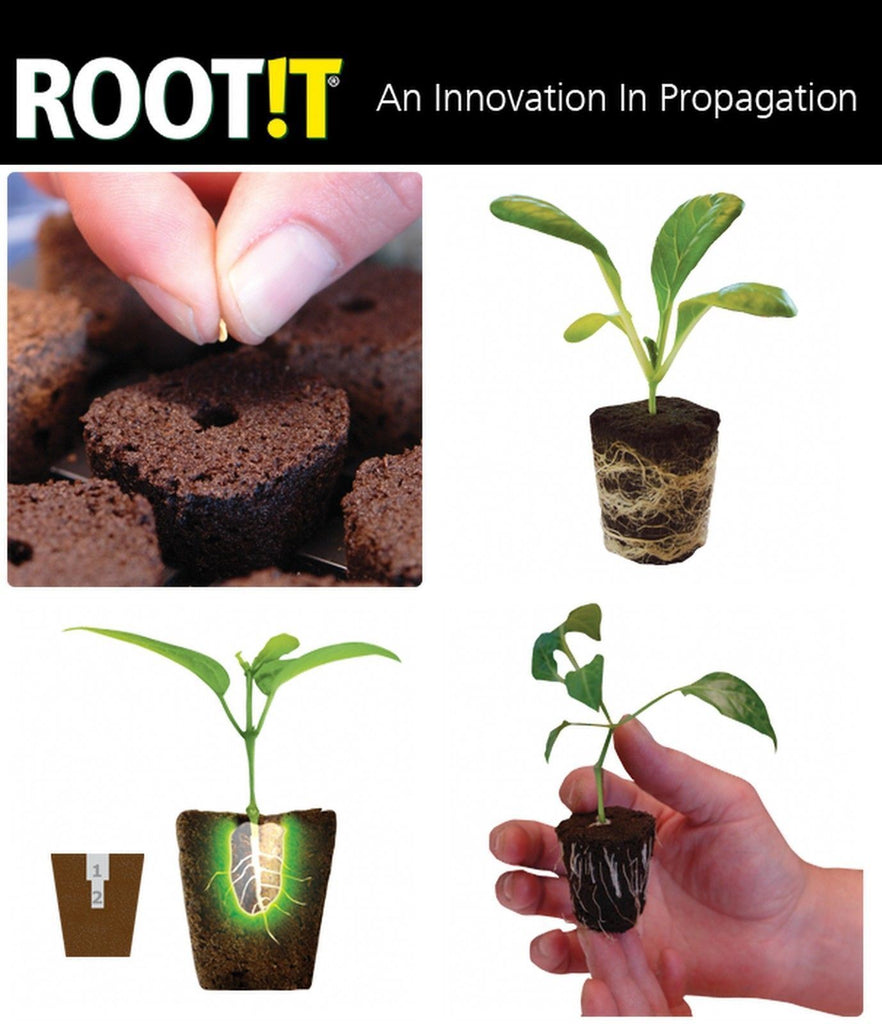 Root it 24 Propagation Insert & Trays